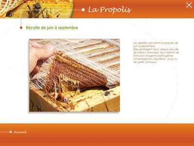 cdrom2_propolis-(1)