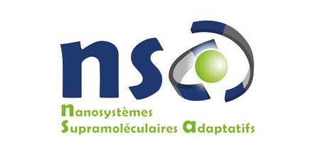 NSA nanosystèmes supramoléculaires adaptatifs
