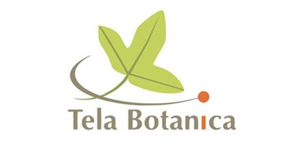 Tela botanica réseau des botanistes francophones
