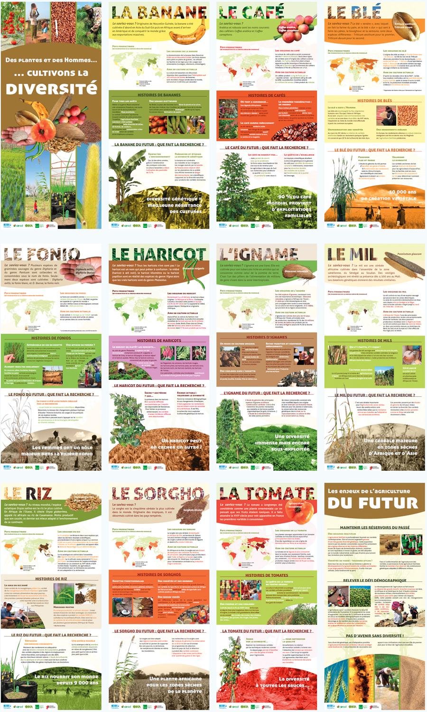 Exposition Des Plantes Et Des Hommes S Com Science